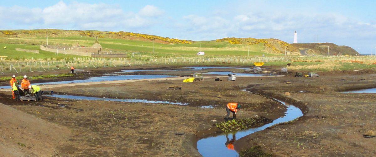 East Tullos Burn wetland creation in Progress