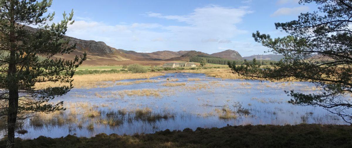 River and Floodplain Restoration